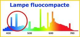 Graphique lampe fluocompacte