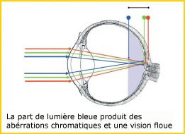PRiSMA® Bluelightprotect - Lunettes et Clip-On de protection